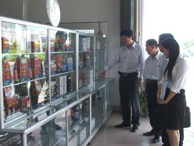 H 1 - Hội Doanh nhân trẻ Việt Nam: Khảo sát, thẩm định 6 doanh nghiệp trên địa bàn tỉnh lọt vào vòng chung tuyển Giải thưởng Sao Vàng đất Việt năm 2011